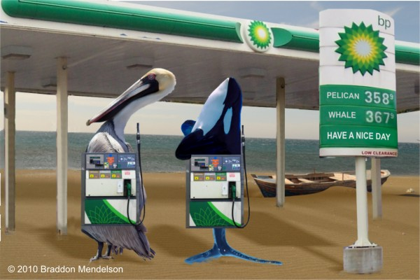 Tags: bp , british petroleum , gulf of mexico , oil spill